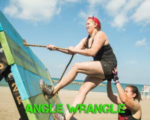 Angle Wrangle