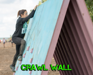 Crawl Wall