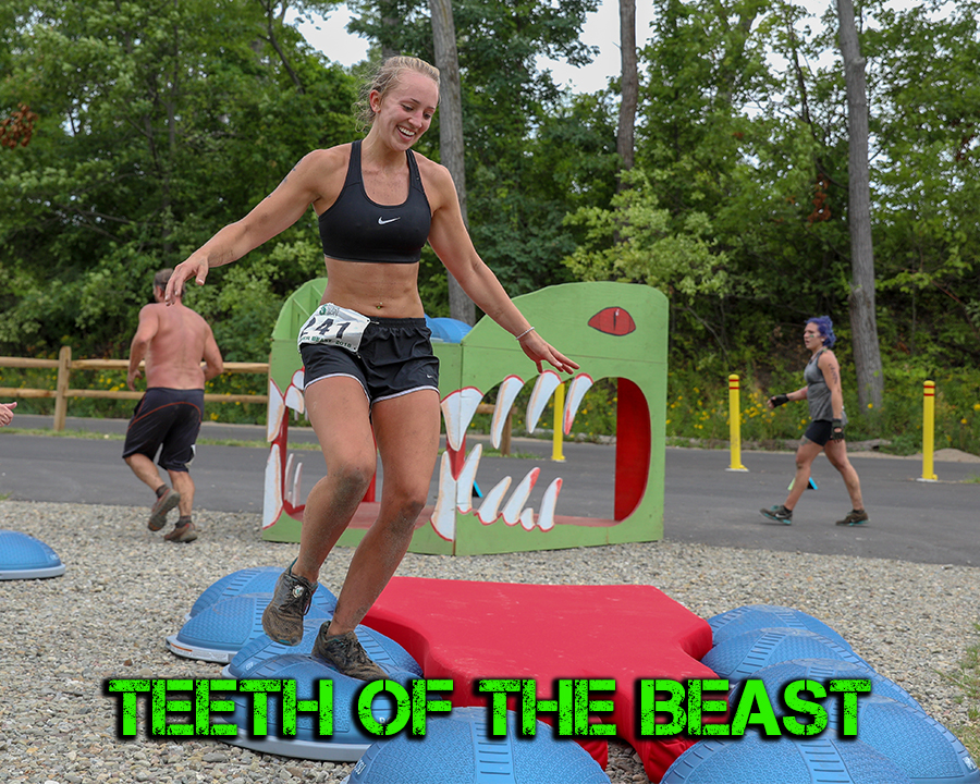 Teeth of the Beast