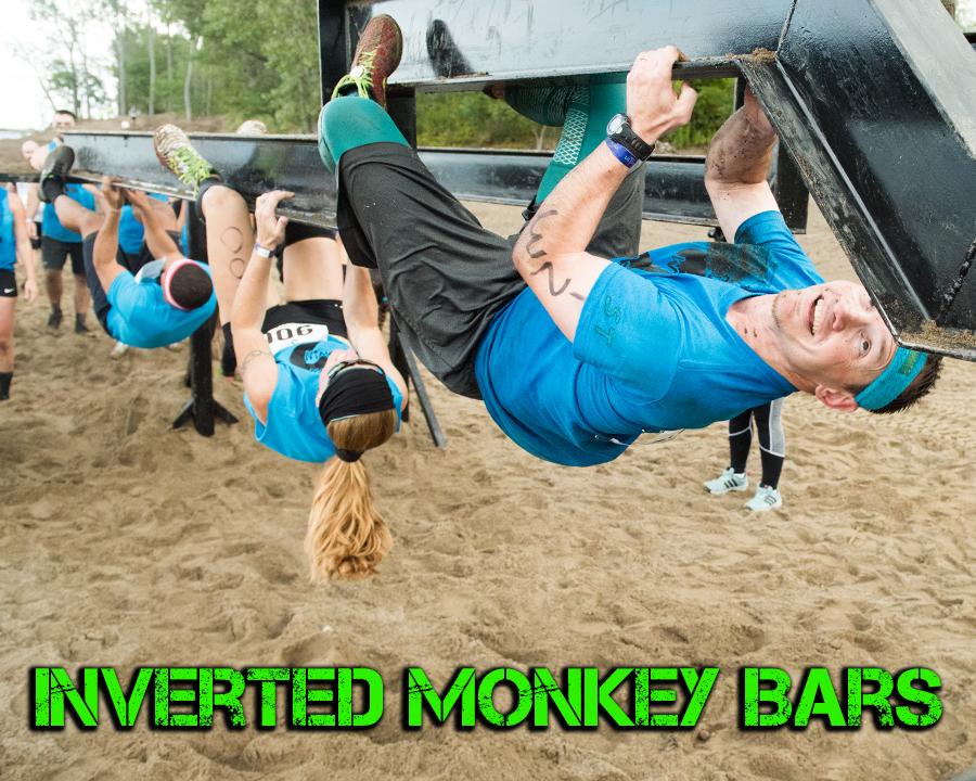 Inverted Monkey Bars