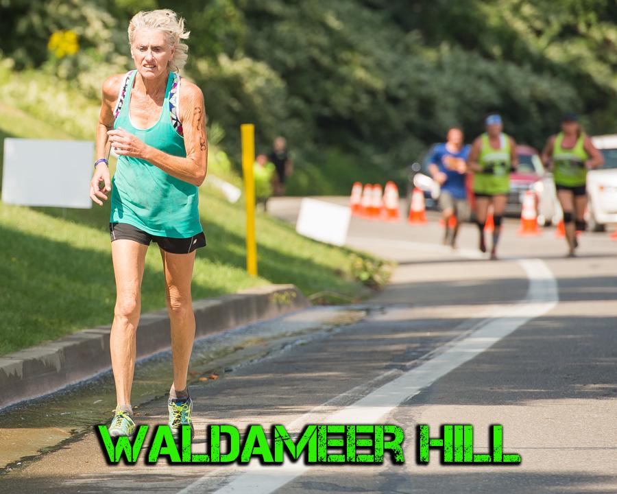 Waldameer Hill